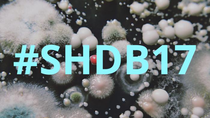 #SHDB17